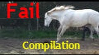 Kicked by a horse - Compilation
