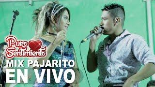 Mix Pajarito Puro Sentimiento Concierto Oficial Primicia 2017 4K