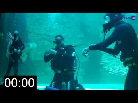 Xxx Mp4 Man Probeer Kubus Onderwater In 9 58 Sek Voltooi 3gp Sex