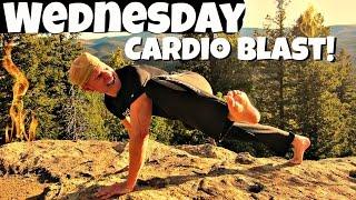 Day 3 - 6 Min HIIT Cardio Blast Workout - 7 Day Fat Burning Challenge #7dayfatburningchallenge