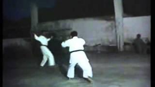 pakistan karate demonstration.flv