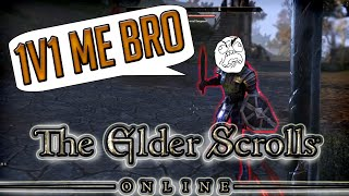 KILL THE IMPERIALS!!! (Elder Scrolls Online Funny Moments)