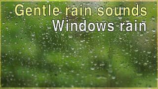 gentle rain sounds for sleeping 3 hours - windows rain