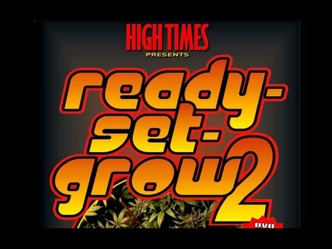 How To Grow Cannabis Marijuana Indoors Vol 2 Full Tutorial