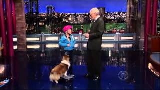 Full Show with Stupid Pet Tricks on David Letterman 15 November, 2013