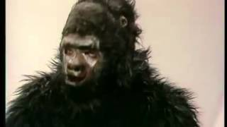 Comedy for ELT - Gerald the Gorilla