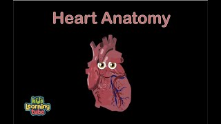 The Human Body for Kids/Learn about the Human Body for Children/Heart Song for Kids