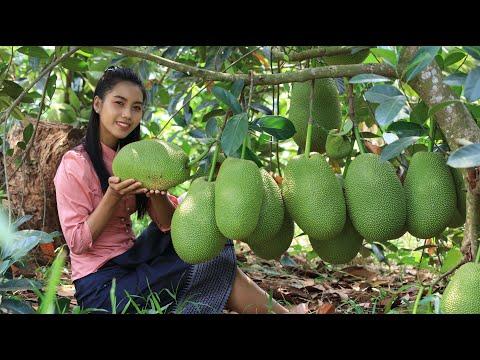 Fresh jackfruit in my homeland