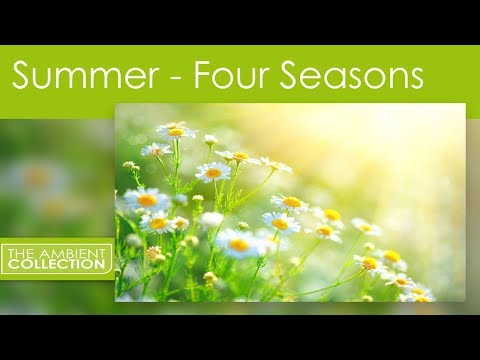 Xxx Mp4 Nature DVD Four Seasons Summer With Natural Sounds 3gp Sex