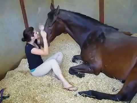 Xxx Mp4 2016 Video By Girl And Horse 3gp Sex