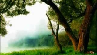 الشيخ ماهر المعيقلي, روائع الشيخ ماهر المعيقلي, قرآن.wmv