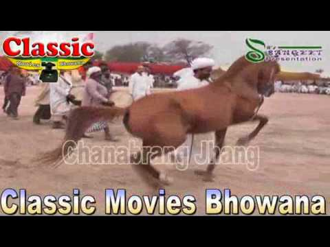 Xxx Mp4 Horse Dance 2 3 4 June 2015 Part 10 Darbar Peer Dolat Shah Bukhari Rajoa Sadat Chiniot 3gp Sex