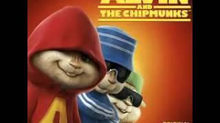 Chipmunks hit the quan