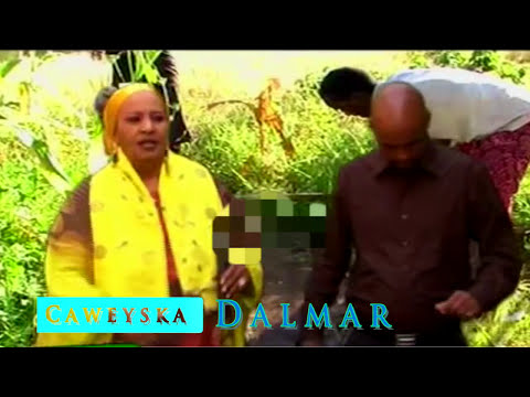 Khadra Daahir & Faysal Tashi Dayaxii Madooba