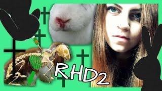 RHD / RHD2 Virus | Wie Kaninchen schützen?