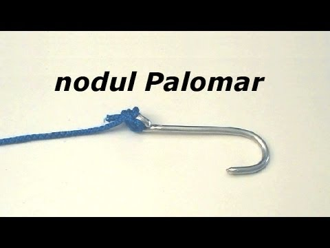 nodul Palomar