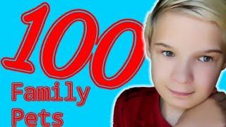 Премьера клипа на 100 подписчиков « Family pets»