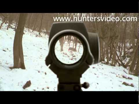 Wild Boar Fever 3 Hunters Video
