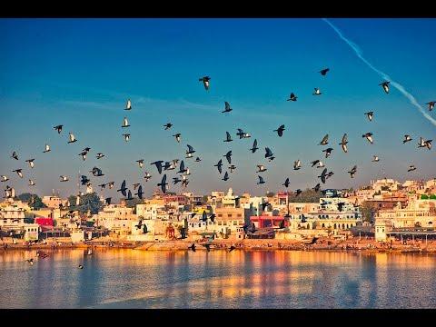 The Great Rajasthan Food Trail || Day 1 Vlog || Delhi - Pushkar