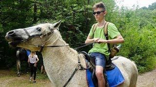 первый раз на коне.