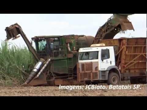 Corte Mecanizado da Cana Colhedeira Transbordo e Carregamento da cana Picada 24 11 2012