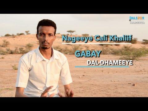 Xxx Mp4 Gabay Dal Dhameeye Nageeye Cali Khaliif 3gp Sex