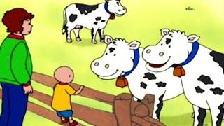 Caillou em Português ★ Episódios Completos ★ Caillou e os cachorrinhos ★ Desenho Animado ★