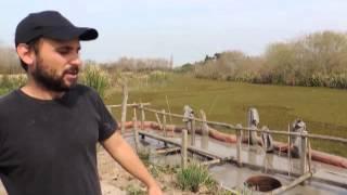 VOCES EN EL MONTE - Documental sobre el puerto y el desmonte en Berisso