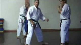 GOJU RYU KARATE - TRAINING TECHNIQUES 1 - KIHON BASICS