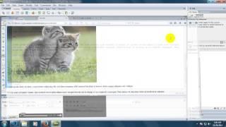 Basic web design class 2 (Navdisenyo)
