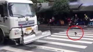 Heartwarming Moment: Road sprinkler stops for puppy