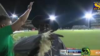 CPL 2016 ।SHAKIB ।( batting performance vs st kitts and nevis patriots)