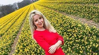 Will tech take over the farm? - BBC Click