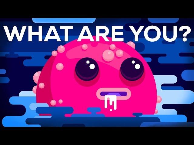 Was bist du ?