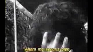 BedHead (Robert Rodriguez) Subtítulos en español