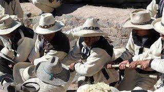 Ancient Tradition Keeps Inca Bridge-Building Alive