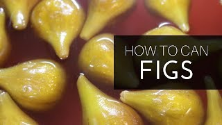 Whole FIGS in a JAR!!!   Canning   EASY!