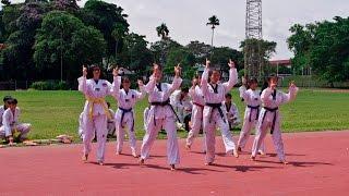 BTS- Danger  Taekwondo aerobic