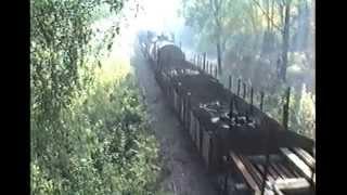 Smalspårigt godståg på AGJ