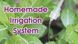 How to make Cheap Water Irrigation System for Plants at Home