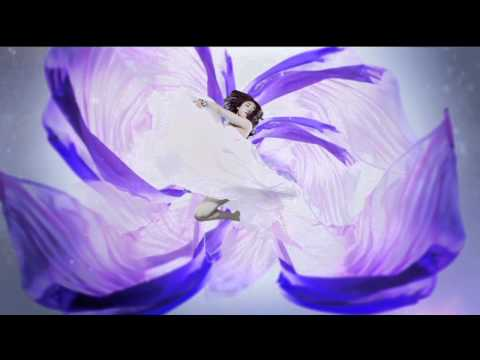 Flower 『太陽と向日葵』 Mp3