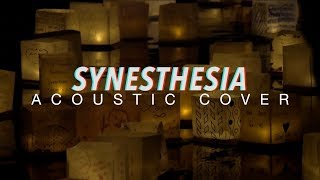 Synesthesia - Mayonnaise (ACOUSTIC Cover by TUH)