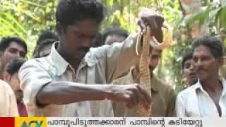 Cobra attacks Vava Suresh (Live visuals)