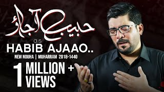 Nohay 2018 - Habib ع Aa Jao | Mir Hasan Mir New Noha 2018-19 | Muharram 1440H Nohay | Nohay 2019