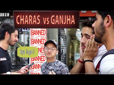 Xxx Mp4 Amazing Reaction Of Delhi On Marijuana Sutta Vs Ganjha 3gp Sex