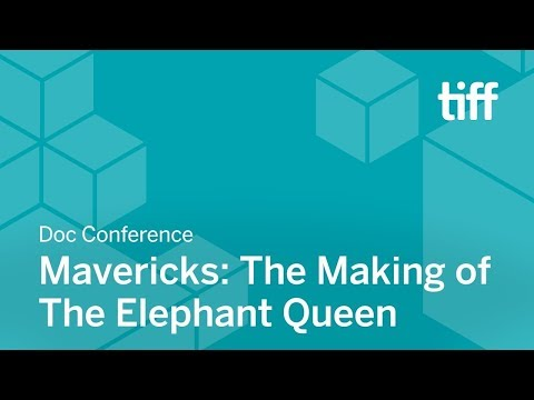 Xxx Mp4 Mavericks The Making Of The Elephant Queen DOC CONFERENCE TIFF 2018 3gp Sex