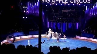 Big Apple Circus -December 29,2017 joanseasonvlogs