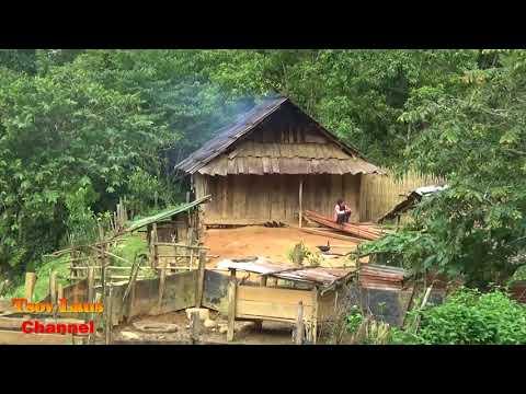 Xxx Mp4 Hmong Farmer Amp How They Live Off The Land Laos 2018 3gp Sex
