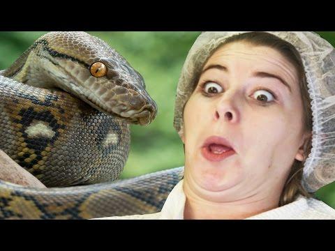 Women Get Snake Venom Facials
