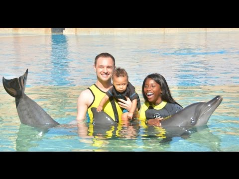 SWIMMING WITH DOLPHINS AT THE ATLANTIS